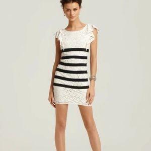 BCBG Renata Lace Dress